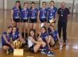 Одбојкашице Гимназије освојиле сребро